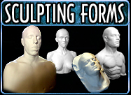 SCULPTING FORMS BUTTON